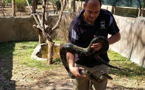 Perry's Bridge Reptile Park
